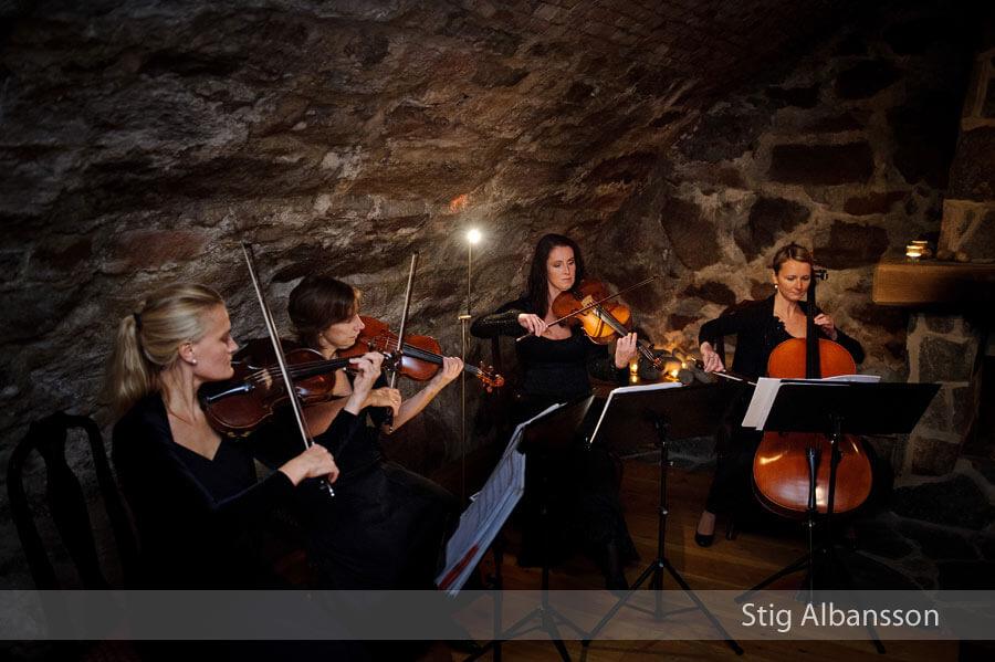 stråkkvartett Vegakvartetten