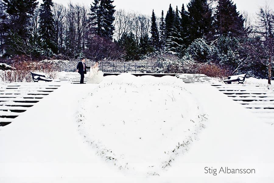 Vinterbröllop i Botaniska Trädgården